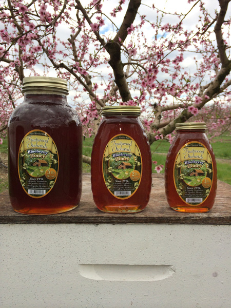 New Jersey Blueberry Honey