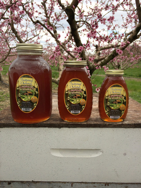 New Jersey Cranberry Honey