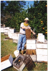 Fruitwood Orchards Beekeeper