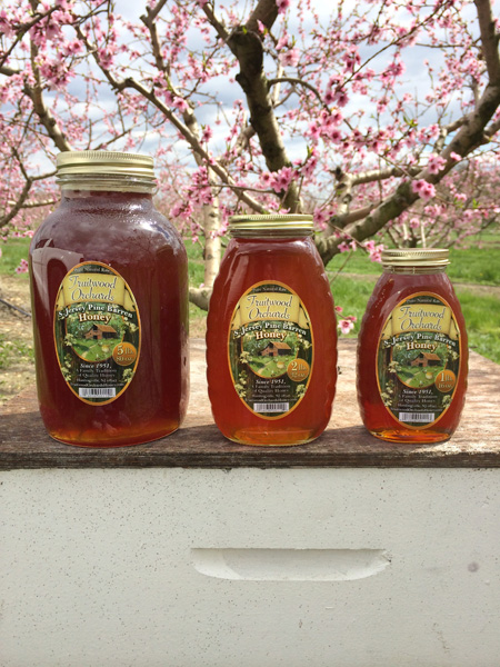Local South Jersey Pine Barren Honey